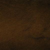 К 2012 св.коричневый